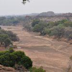 Ingogo Safaris