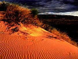 Kalahari Dunes - Northern Cape