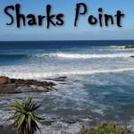 Sharks Point