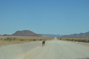 Namibia Dirt Roads