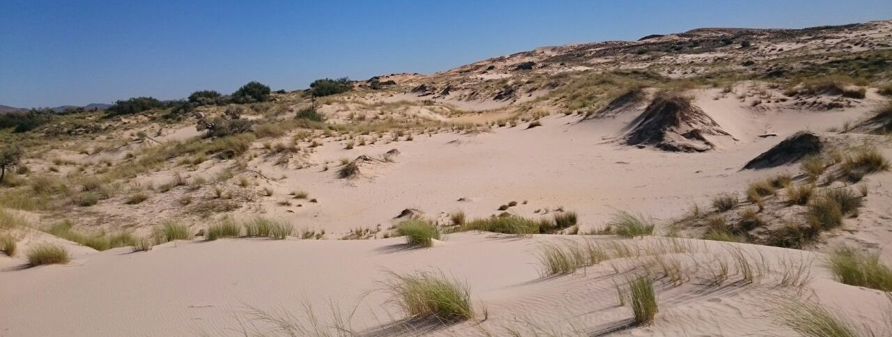 Northern Cape Tourism for the Offroad traveller