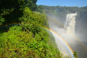 Zim - Vic Falls