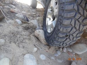 mud-terrain-tyres