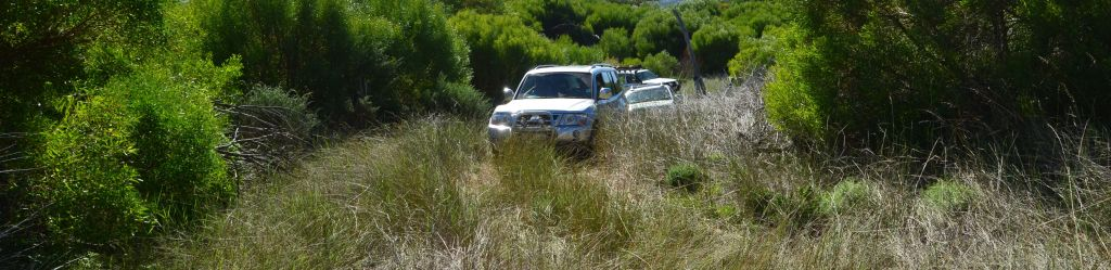 4x4 Africa - grass driving