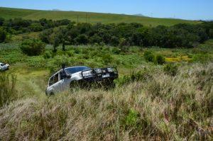 grass-4x4-driving