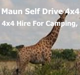 Maun Self Drive 4x4 - 4x4 and Camper Rental