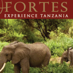 Fortes Safaris - 4x4 and Camper Rental